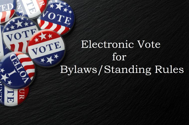vote bylaws